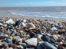 А это - опять море вчера, но уже на другой косе - Камышеватской