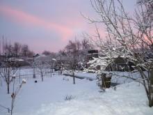 Раннее зимнее утро в Синегорке.