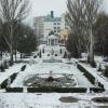 Крупный, тихий снег в начале марта.
