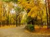 Осень в парке Островского